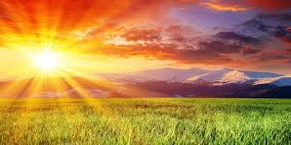 Fertilizantes ecológicos a partir de la luz solar