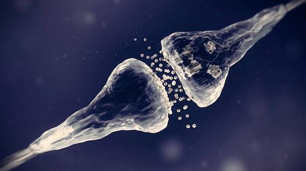 Crean transistor que imita funcionamiento de neuronas