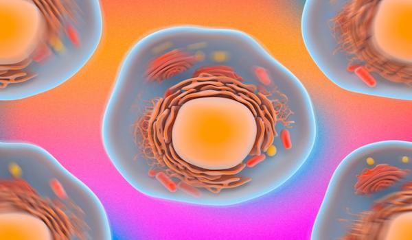 Técnica rápida y no invasiva para probar las células puede revelar una enfermedad