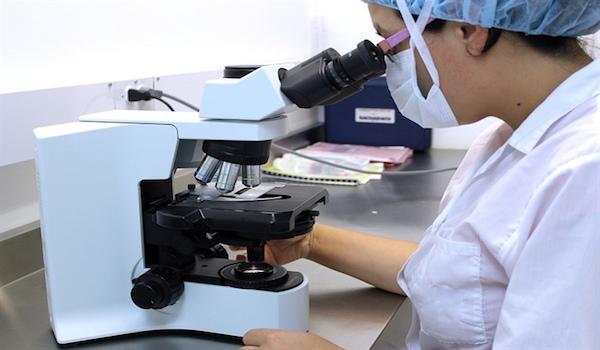 Identifican molécula para el tratamiento del Alzheimer