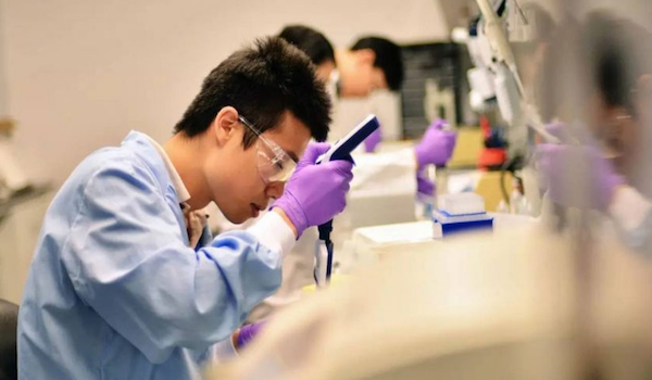 Investigadores transforman células cutáneas humanas directamente en neuronas motoras