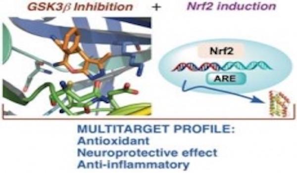 Nuevos avances en el tratamiento de la enfermedad de Alzheimer