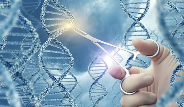 Nuevas versiones del editor CRISPR nos acercan al sueño de curar enfermedades genéticas
