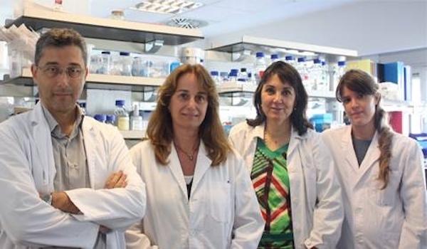 Una terapia génica protege contra los déficits cognitivos y de memoria asociados al envejecimiento