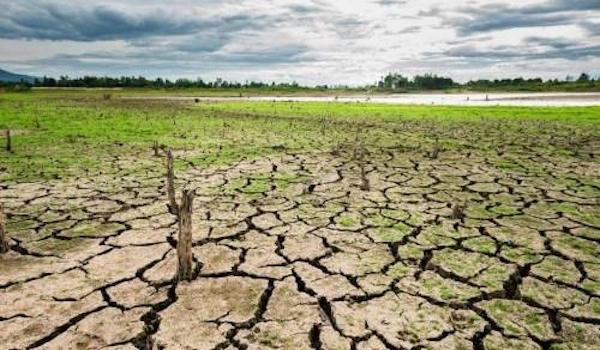 Estudian el impacto del cambio climático en el Corredor Seco Centroamericano