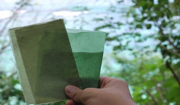 Desde Indonesia, envoltorio biodegradable y comestible a base de algas
